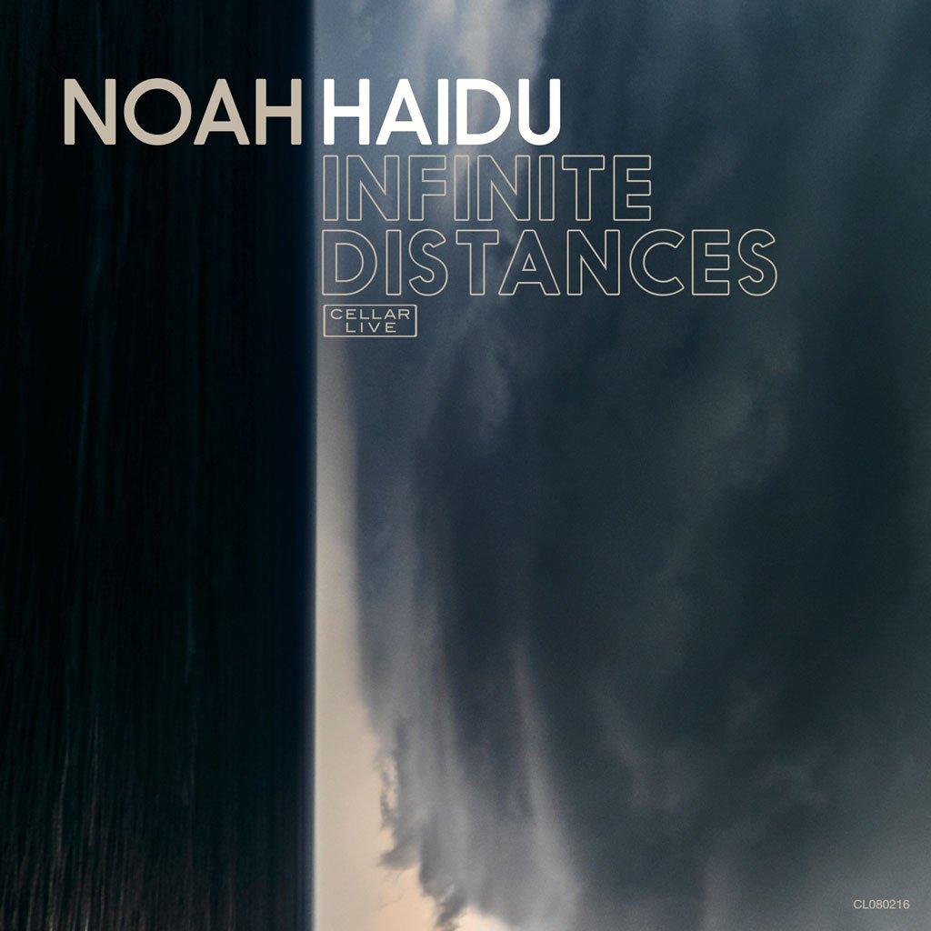 http://downbeat.com/images/reviews/noah_haidu_infinite_distances.jpg
